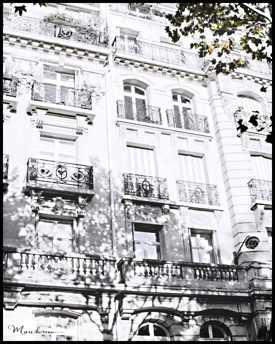 ホリマリ白いパリの風景 White Paris series1