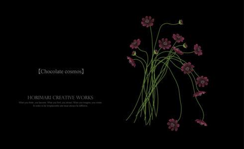 ホリマリ プチデザイナーコース-イラストレーターでお花を描く。チョコレートコスモスが可愛すぎて感動!
